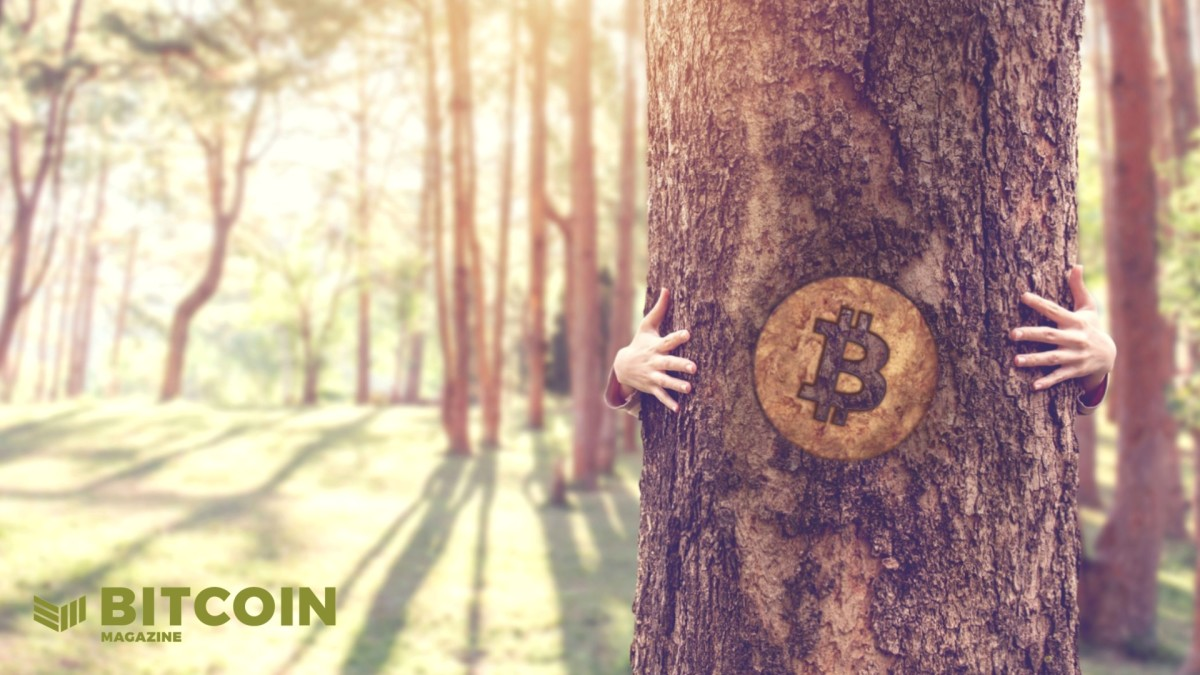What Is A Carbon Negative Bitcoin Block?